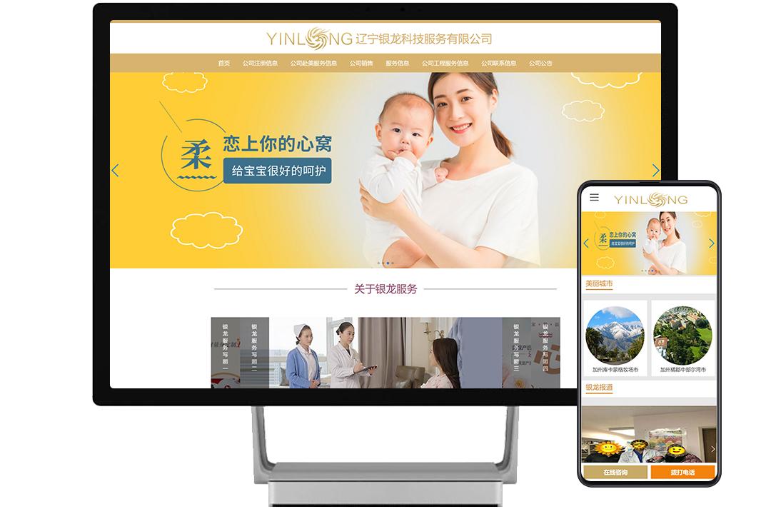 辽宁银龙科技服务有限公司案例